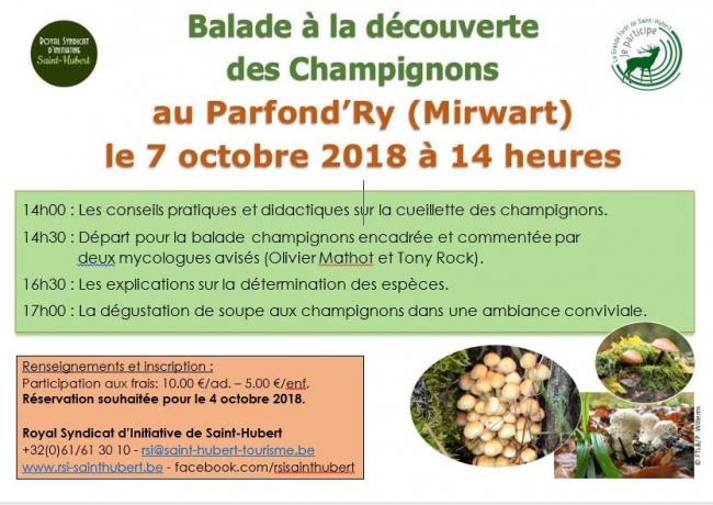 7 octobre.Balade champignons.JPG