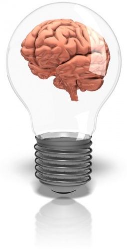 brain_in_lightbulb_800_9184.jpg